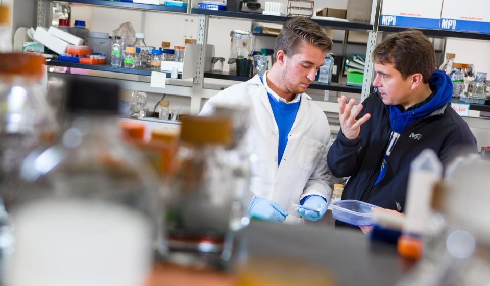 Agriculture and Medical Biotechnology University of Kentucky